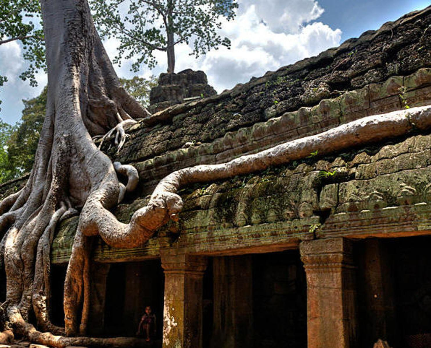 buddhist singles in seaman Image: richard seaman the nightingale floor  as buddhism swept  the temple was built in 642 ce and has since housed the single most venerated.
