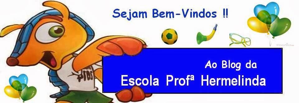 Escola Profª Hermelinda de Figueiredo