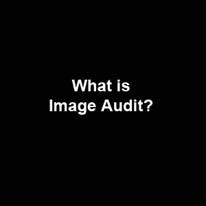 What is image audit?