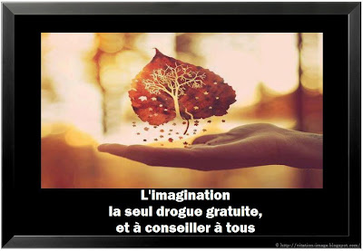 Citation imagination en image
