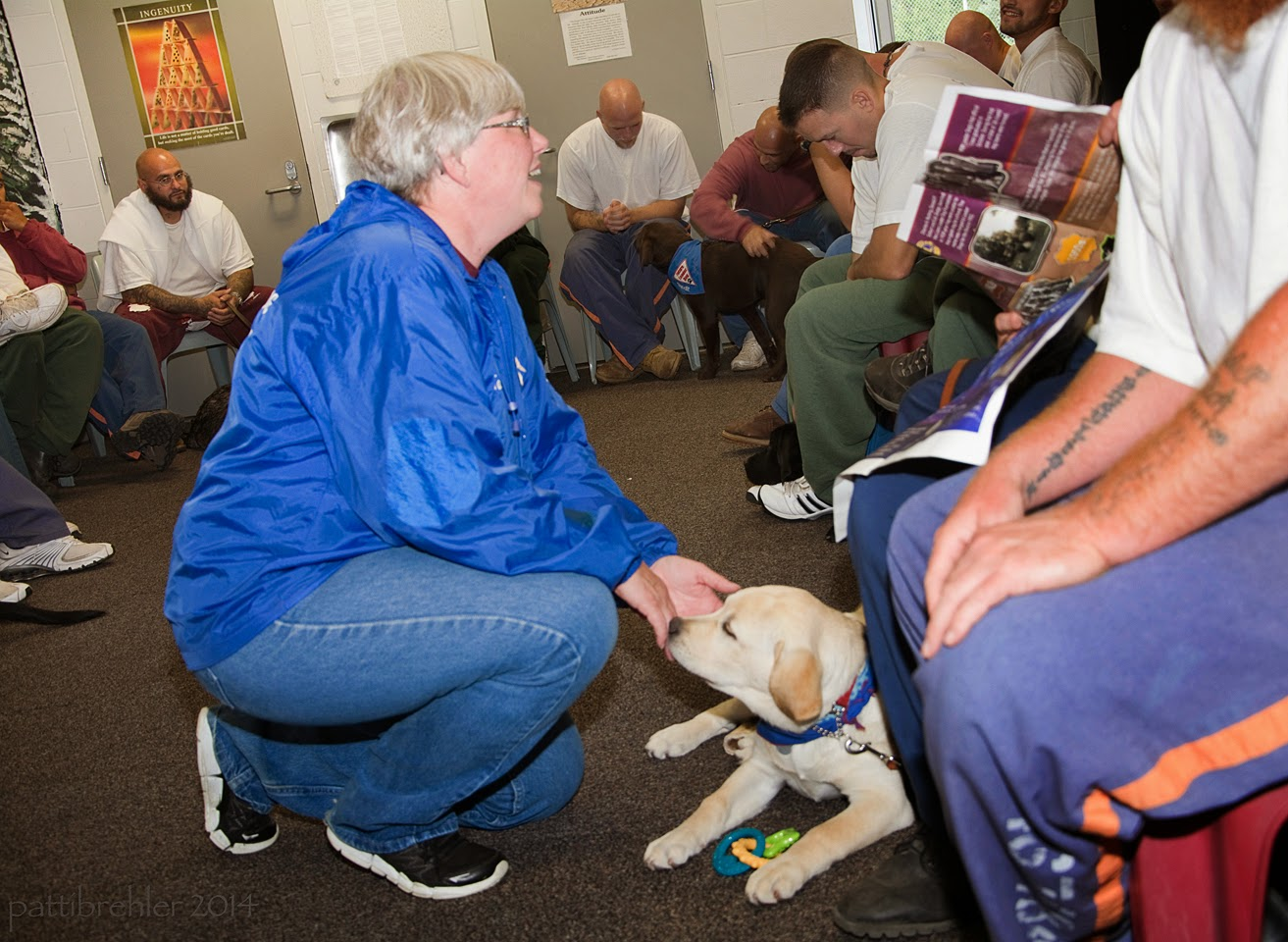 A woman wearing blue jeans and a royal blue windbreaker is squatting done in the middle of a room full of men inmates. She is facing the right and her hands are reaching down to a young yellow lab puppy lying on the carpeted floor in front of her. She is looking at the men seated behind the puppy.