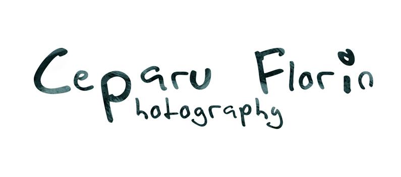 C. Florin Photoblog