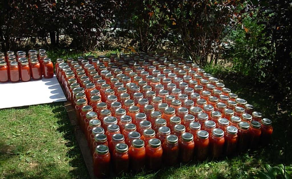 zolasoleil sous le soleil cuisine et v lo conserves de tomates 2011. Black Bedroom Furniture Sets. Home Design Ideas