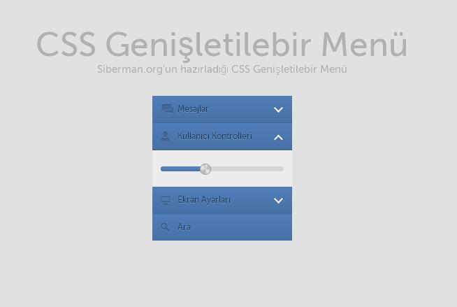 Css Genişletilebilir Menü Kullanıcı Kontrolleri