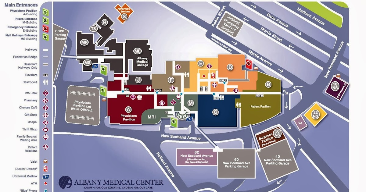 Information Design Albany Medical Center