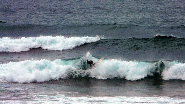 surfista en la ola 03