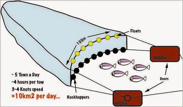 мини трал для ловли рыбы
