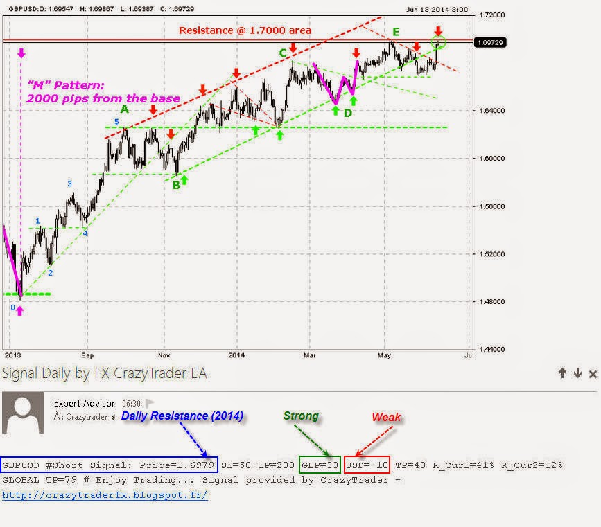 Forex signals 50 pips daily