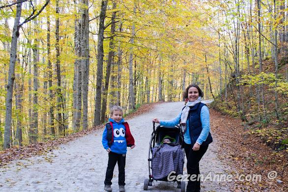 Yedigöller yollarında oğlum ve bebeğimle yürürken, Bolu