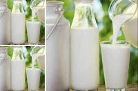 Kandungan Nutri pada Susu