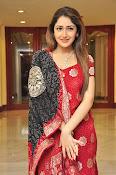Sayesha latest glamorous photos-thumbnail-10