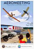 Aeromeeting 2014