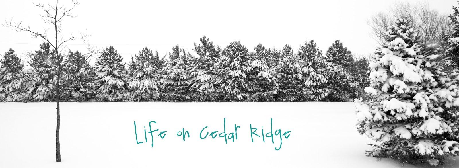 Life on Cedar Ridge