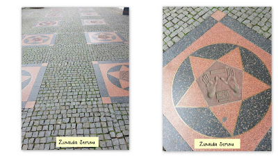 zoo-praga-walk-of-fame-dreapta-prima-stea