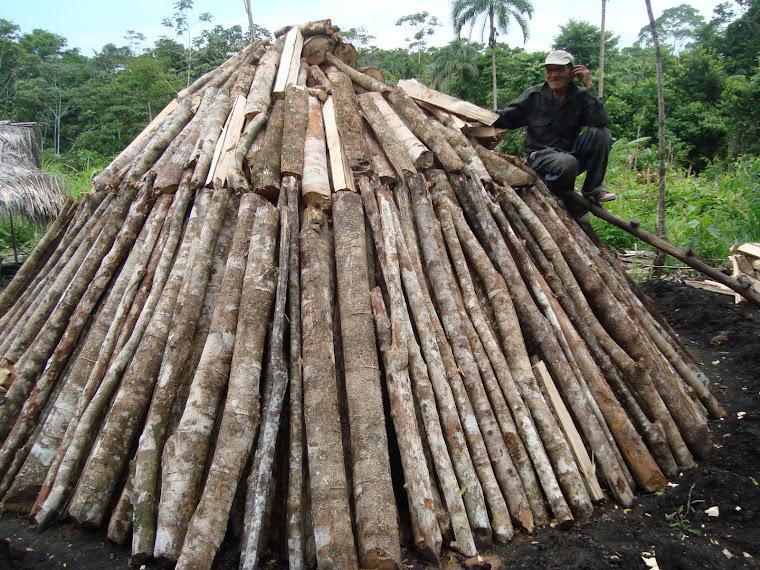 Carboneros del momon