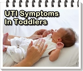 uti symptoms in babies and toddlers that we should know