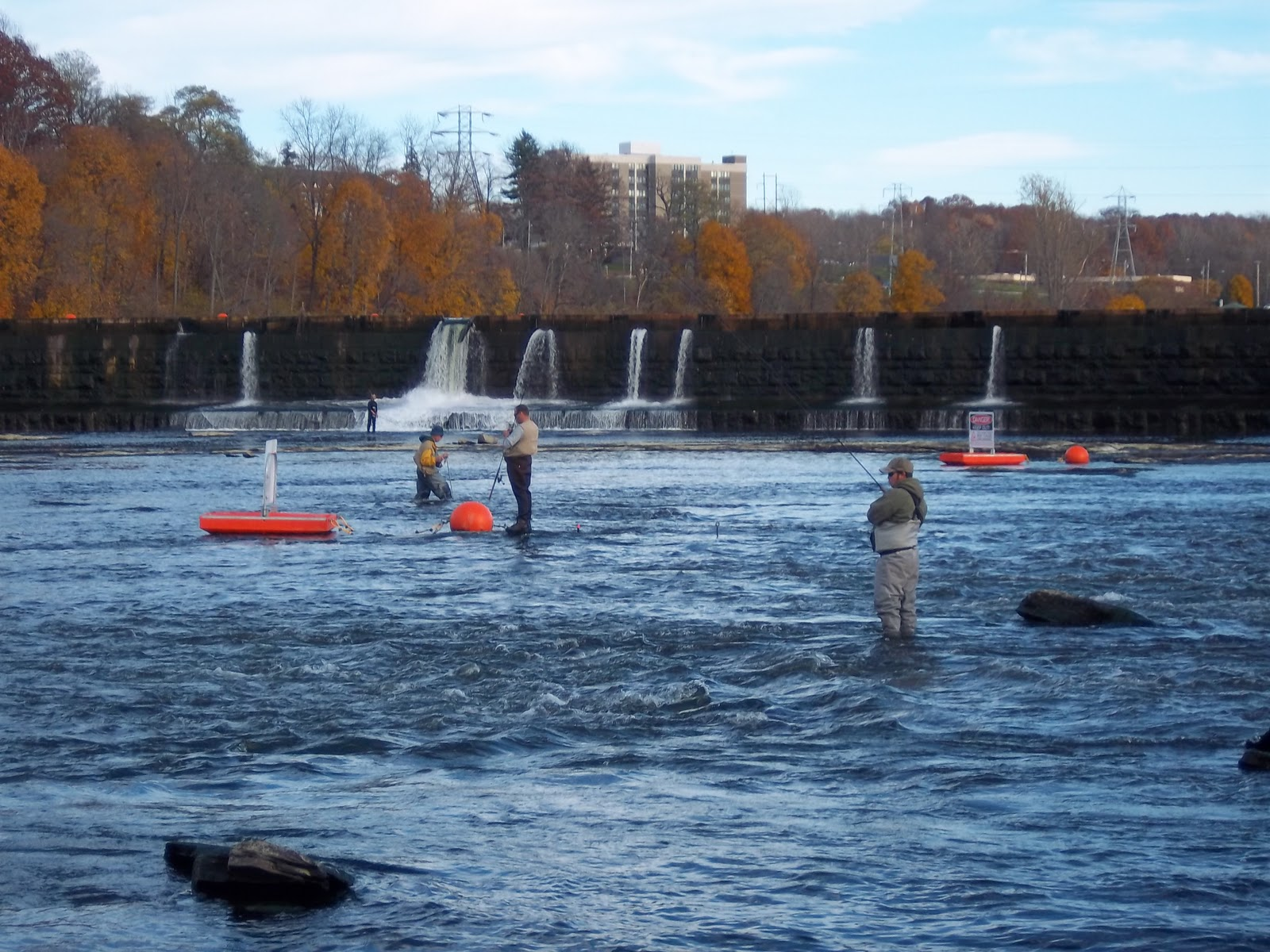 Fishing hunting in oswego county ny november 2011 for Oswego river fishing