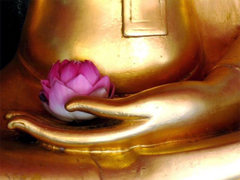 Abundancia Amor Y Plenitud Mantras Para La Proteccion | apexwallpapers ...