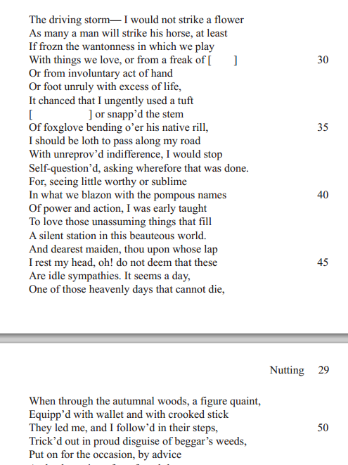 "wordsworths nutting Abstract this article applies the insights of affect studies to william wordsworth's  controversial ""nutting"" (1800), a poem whose sudden shifts in tone fuel."