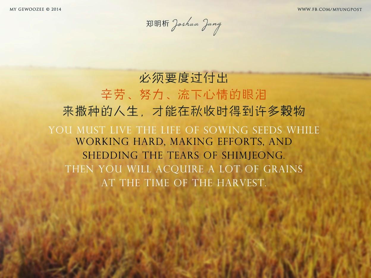 郑明析,摄理,月明洞,稻田,谷物,Joshua Jung, Providence, Wolmyeong Dong, Paddy field, seeds