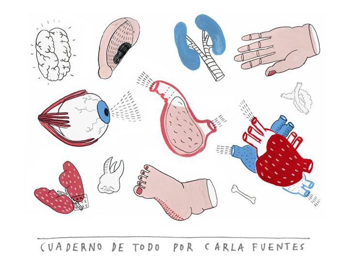 cuaderno de todo por Littleisdrawing/ Carla Fuentes