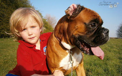 long blond haired boy and beautiful boxer dog