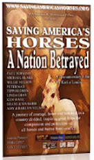 Saving America&#39;s Horses