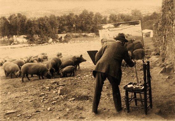 pintando cerdos del natural
