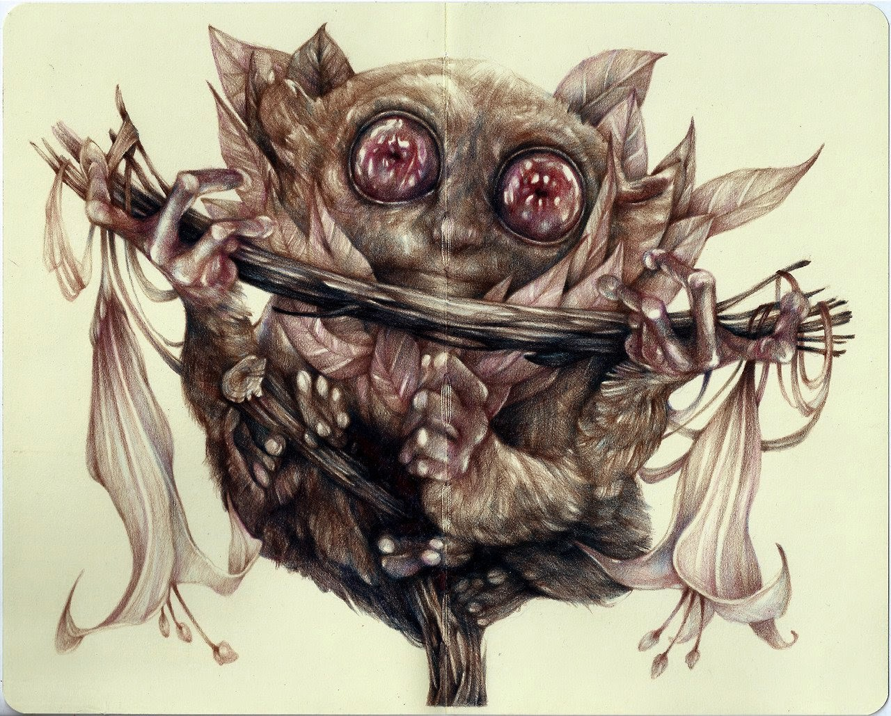 08-Marco-Mazzoni-Surreal-Animal-Drawings-www-designstack-co