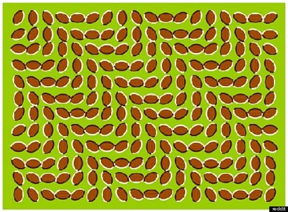 لخدع بصرية مدهشة ستحير عقلك! o-OPTICAL-ILLUSIONS-