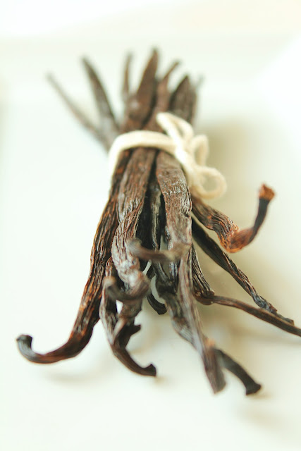 vanilla beans tied with twine