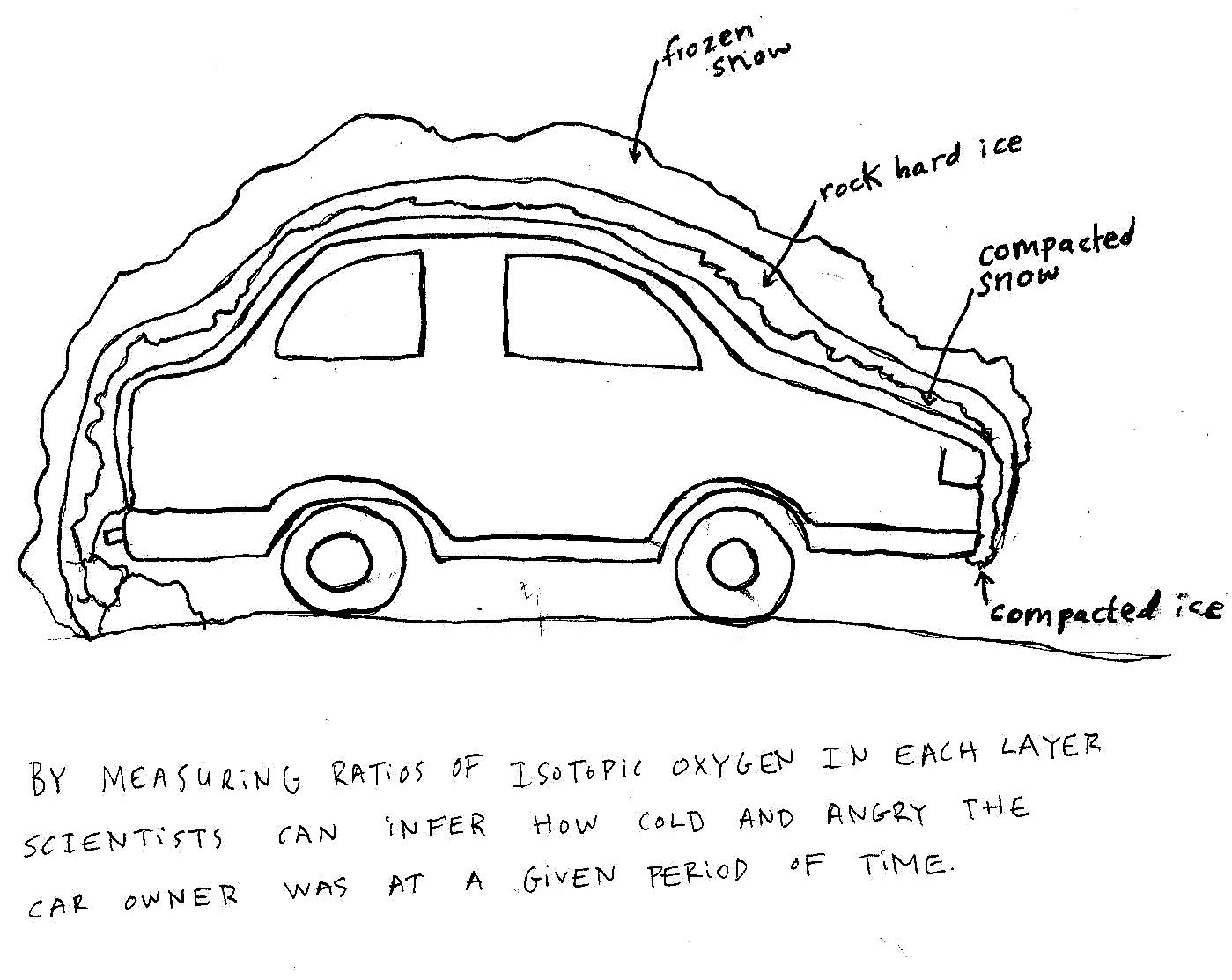 hillary boone cartoons  ford focus cross section analysis