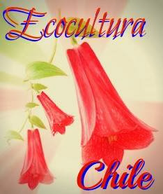 Ecocultura.