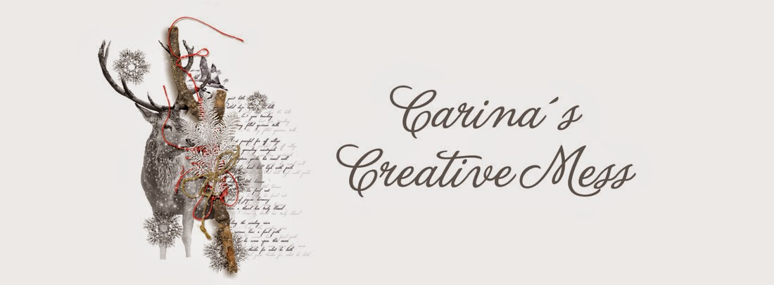 Carina´s Creative Mess