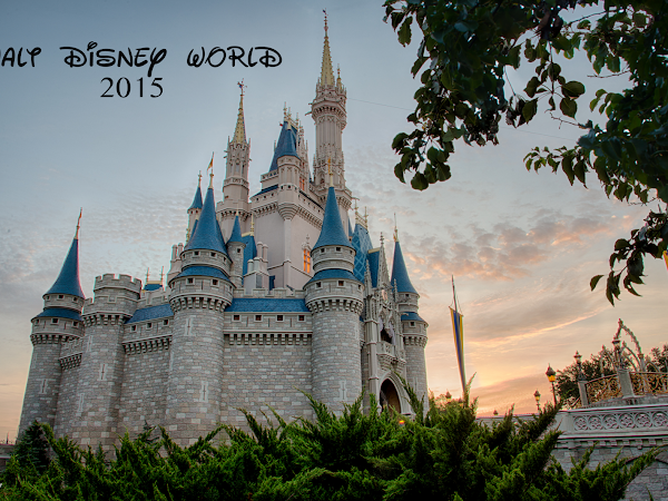 Walt Disney World/ Disney Cruise Vacation Part 1!