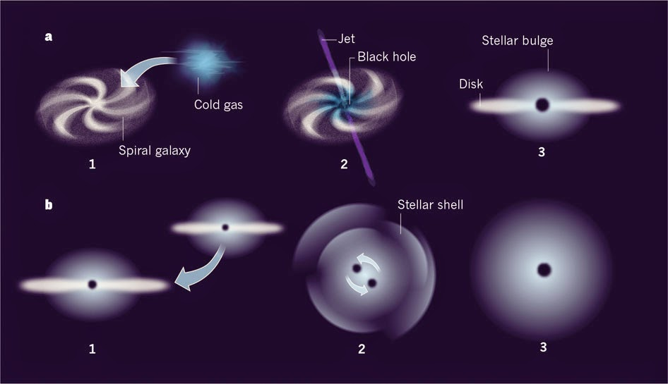 black holes and universes