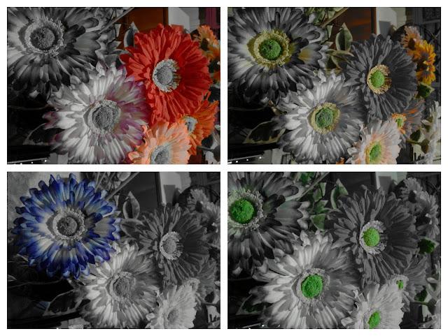 Descrição da imagem: quatro fotos juntas: em todas elas há flores artificiais coloridas, porém, por conta do aplicativo, elas tem  a extração de uma cor nas fotos. Na primeira há cor apenas nas vermelhas e rosas, na segunda nas amarelas e verdes, na terceira somente nas azuis e na quarta apenas nas verdes. Fim da descrição da imagem.