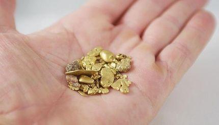 Actual y curioso una bacteria que es capaz de crear for Que es una beta de oro