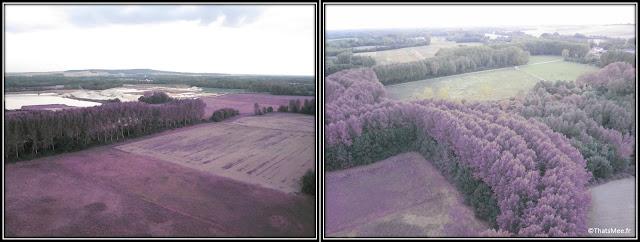 Baptême de montgolfière vue sur les champs filtre violet