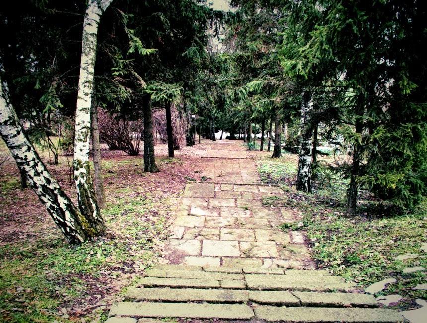 scari gradina botanica iasi