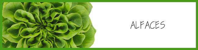 http://www.saladavel.com.br/p/alfaces.html