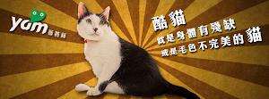 COOL MEOW【酷貓任務】粉絲專頁