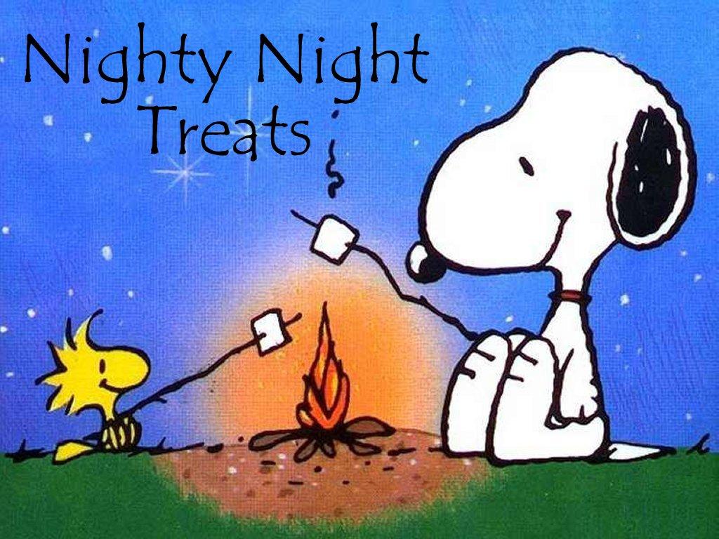 Image Gallery Nighty Night