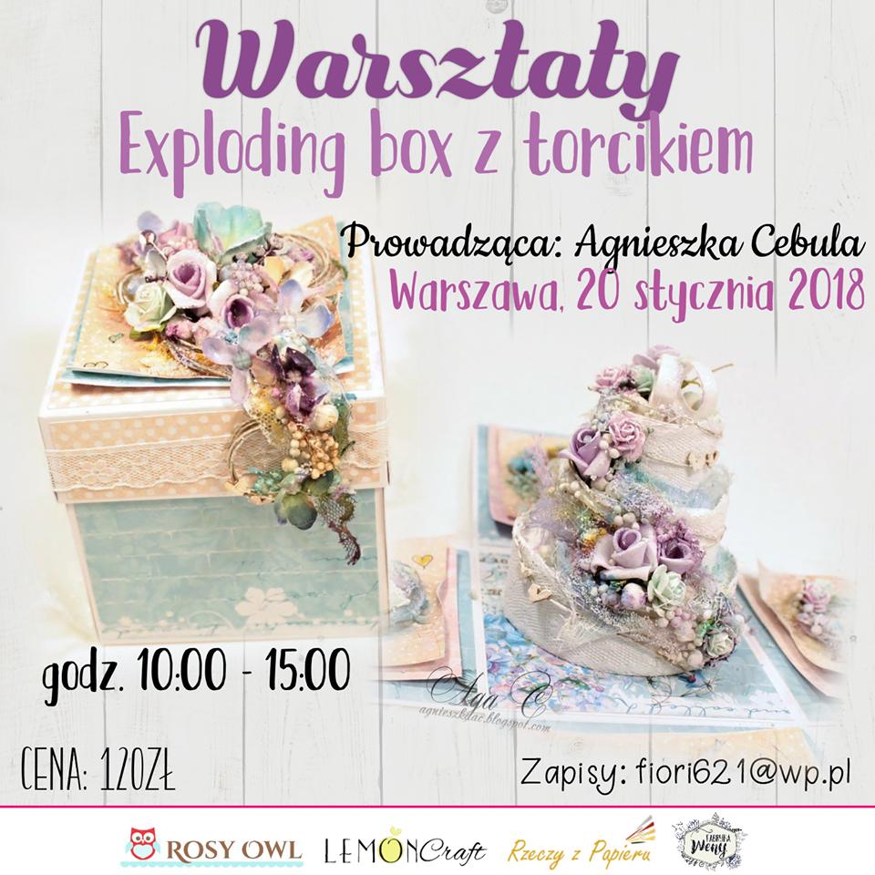 Warszawa 20 stycznia