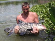 Giant siamese carp 15,0