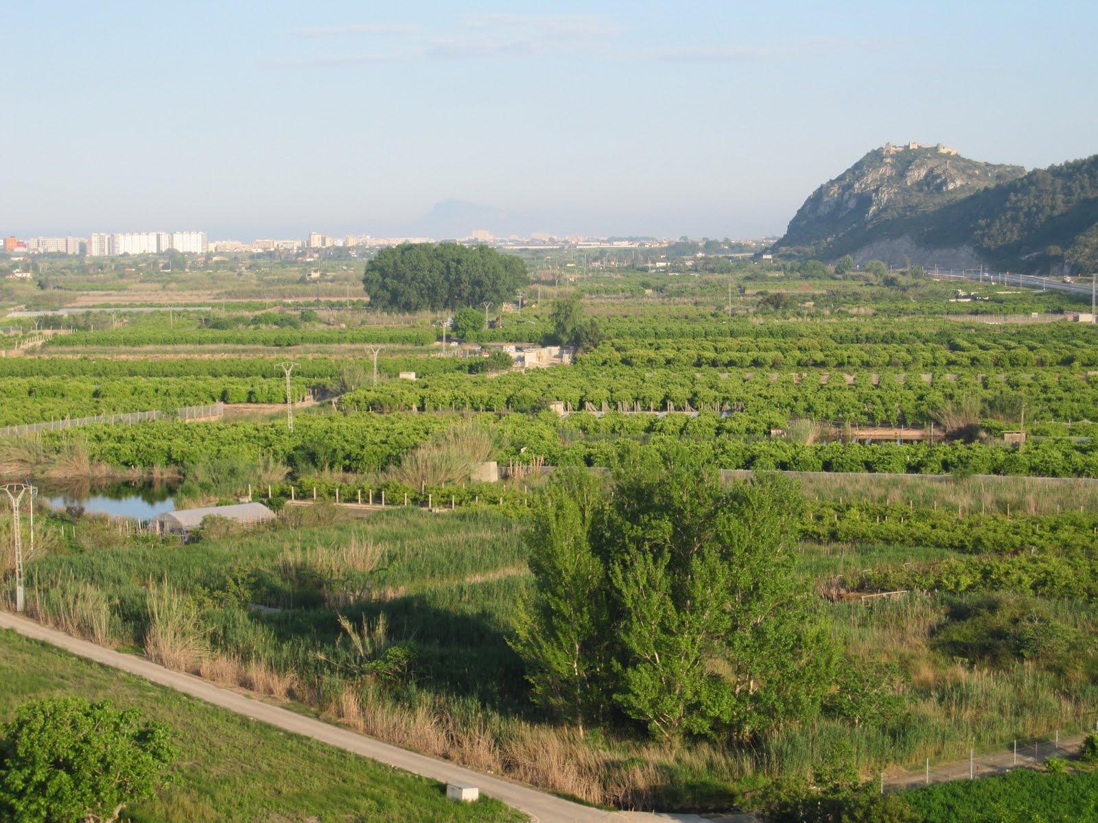 El castell de Bairén des de la Muntanyeta de la Creueta