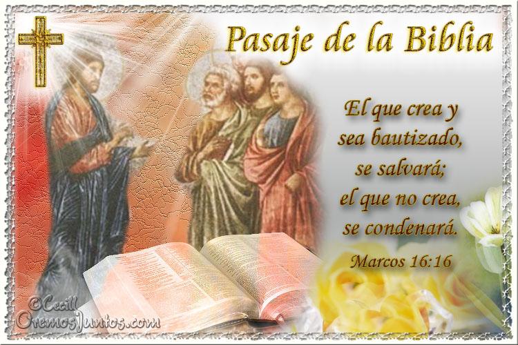 Vidas Santas: Santo Evangelio según san Marcos 16:16