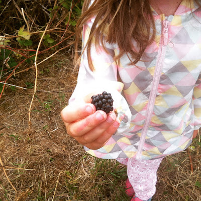 Blackberry picking in the park