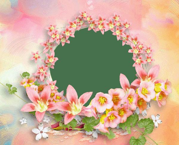 flores para decorar fotografias