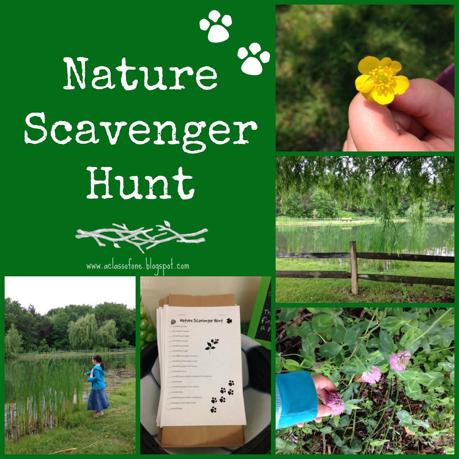 Backyard Nature Scavenger Hunt : Be The One  Nature Scavenger Hunt